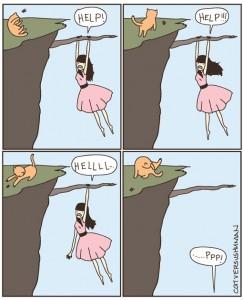 Cat VS human - Help