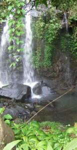 cascade - Bali