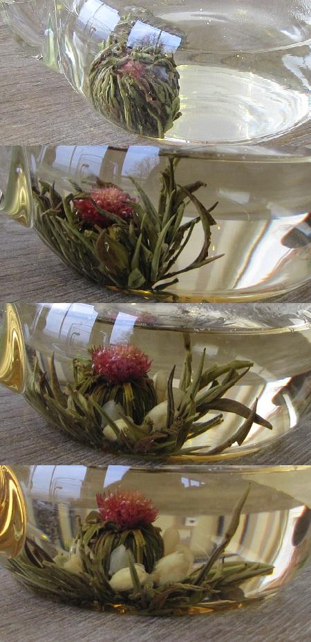 ouverture-fleur-the