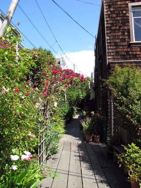 Ascension vers la Coit Tower, beaucoup de marches et de très jolies maisons fleuries !