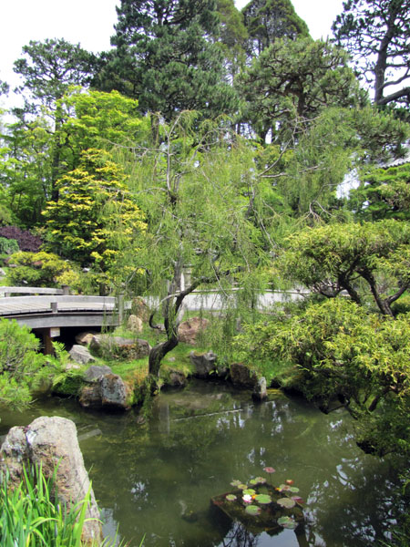SF-Japanese-tea-garden-2