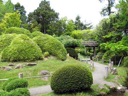 SF-Japanese-tea-garden-4
