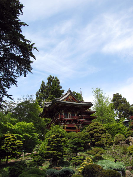 SF-Japanese-tea-garden-6