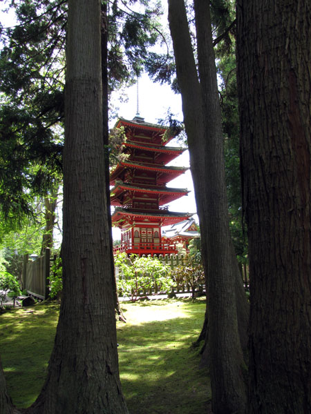 SF-Japanese-tea-garden-7
