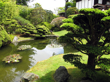 SF-Japanese-tea-garden-8