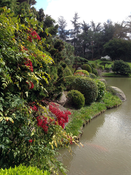 Mnemosune-jardin-jap-5