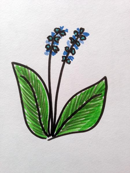 Mnemosune craft day 12 doodles 2